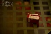 strathmere-inn-garden-spring-wedding-28