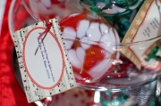 Montebello_Winter_Christmas_Wedding-30