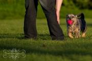 ottawa_engagement_photographers-14