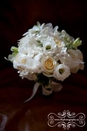 Carleton_Place_Wedding_Photographers-12