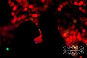 alight_at_night_upper_canada_engagement-04
